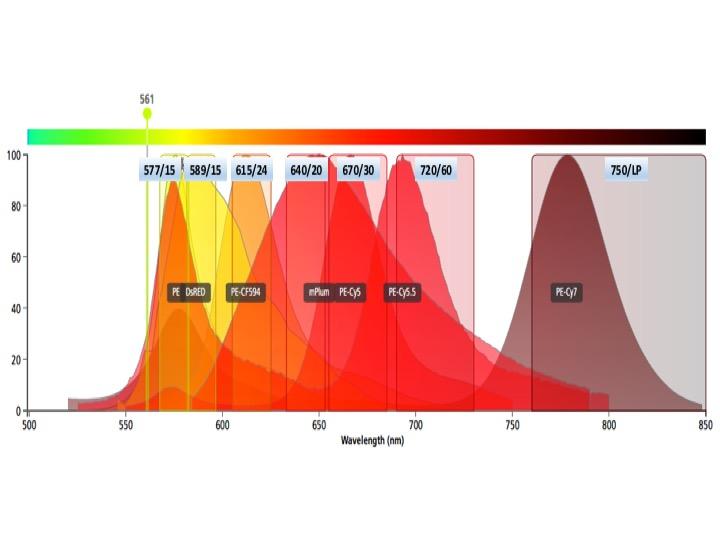 Yeti yellow laser fluors