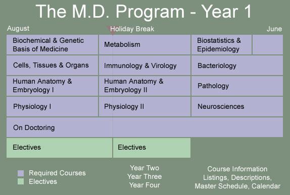 Geisel School of Medicine - Year 1