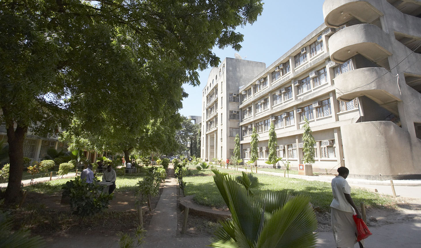 The campus of Muhimbili University of Health and Allied Sciences in Dar es Salaam, Tanzania. Photo by Patrick Saine.
