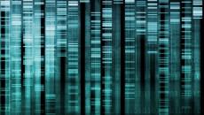 Image of genes-data-shutterstock_43195603