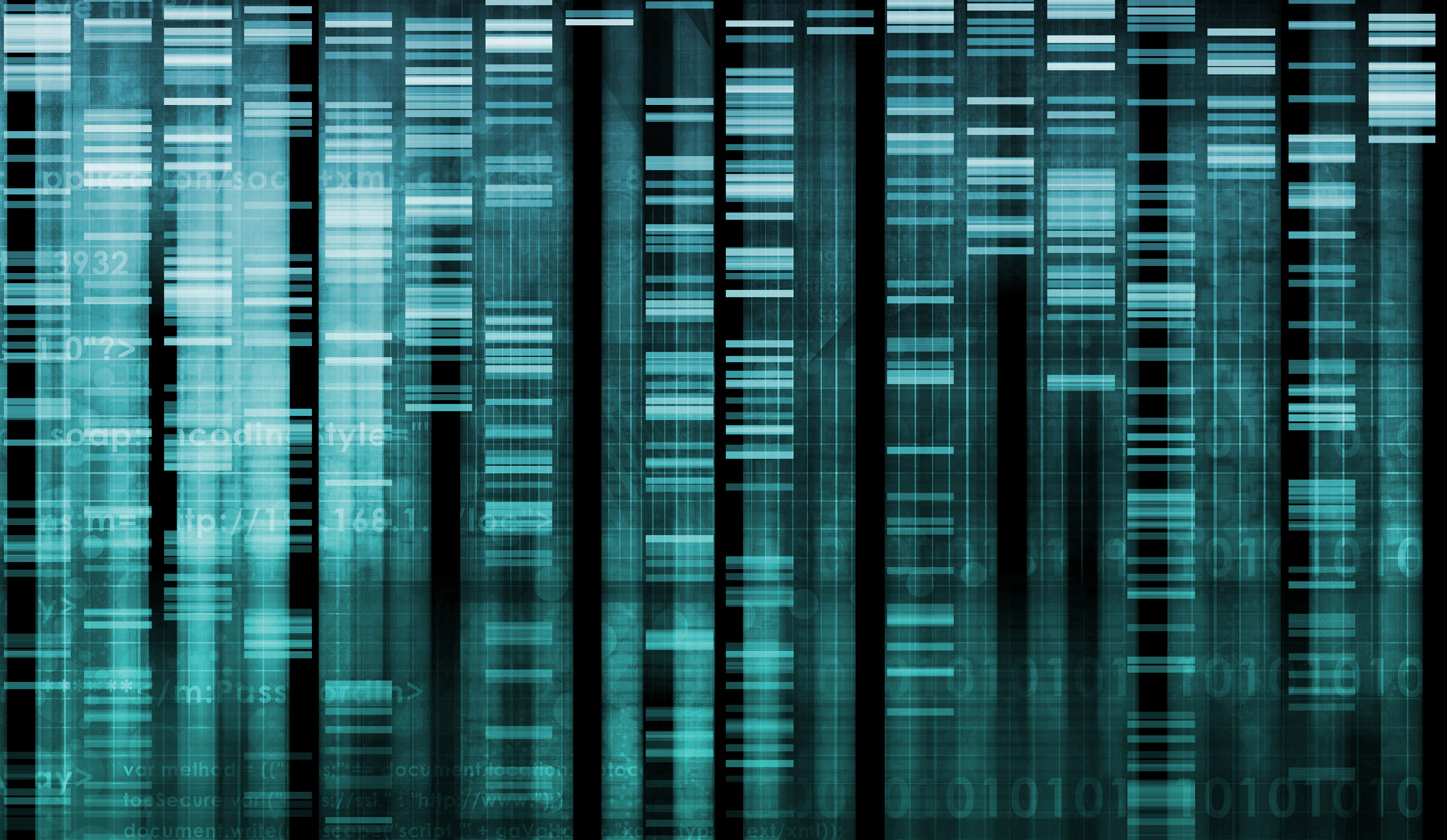 Google-style Ranking Used to Describe Gene Connectivity