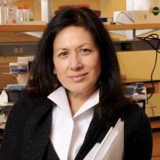 Margaret Karagas, PhD