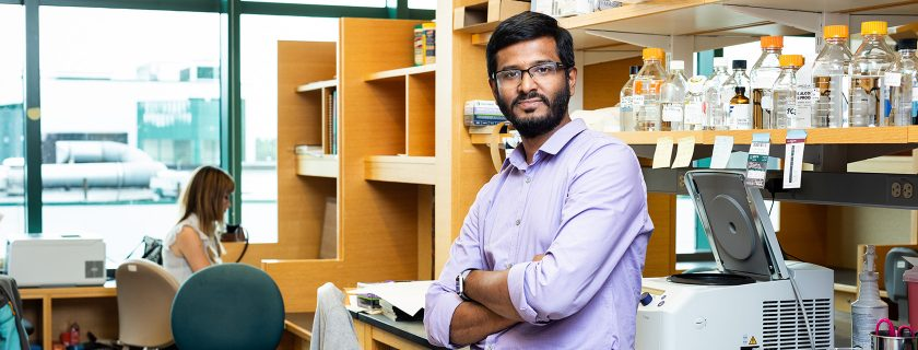Researchers Find Source of Breast Tumor Heterogeneity and Pathway that Limits Emergence