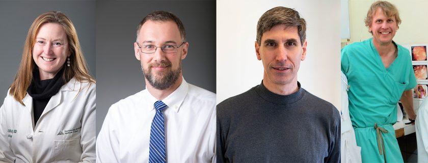 Preclinical Teaching Awards Honor Four Geisel Faculty